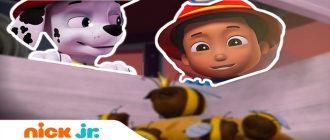 Щенячий патруль - Щенки спасают королеву пчел