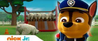 Щенячий патруль - Щенки спасают овечек
